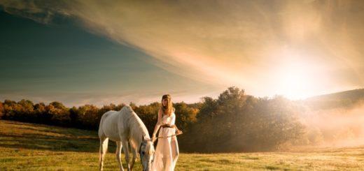 белый конь на зеленой траве