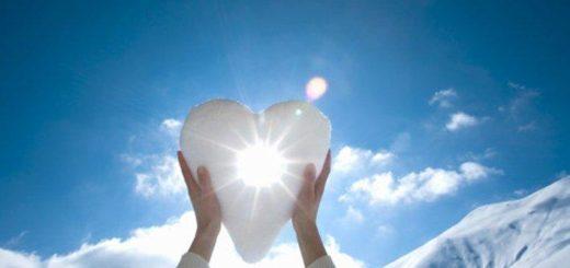 сколько весит человеческое сердце